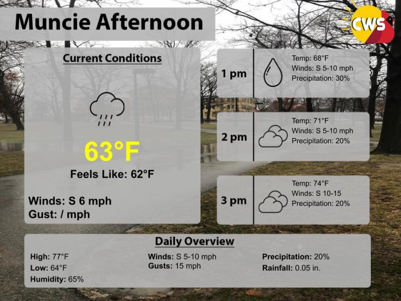 Cool Afternoon, With Rain Showers Possible