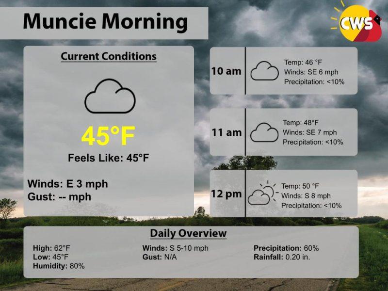 Mild,chance of rain (Thursday March 12th forecast)