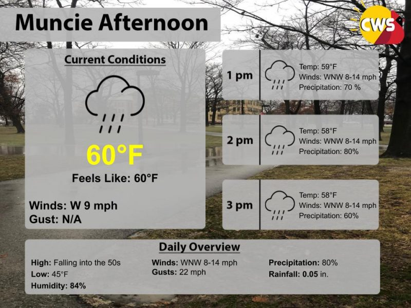Showers to continue this afternoon