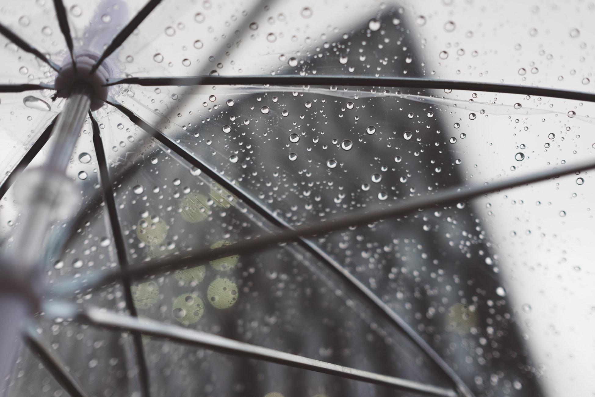 Rain, Storm Chances Today