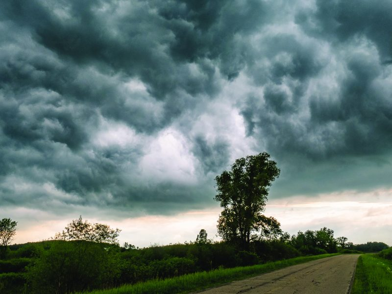 Scattered Showers, Mild Temperatures