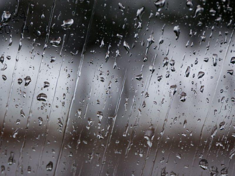 Warm Temps Allow for Rain Showers