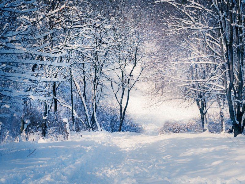 Winter Has The Upper Hand
